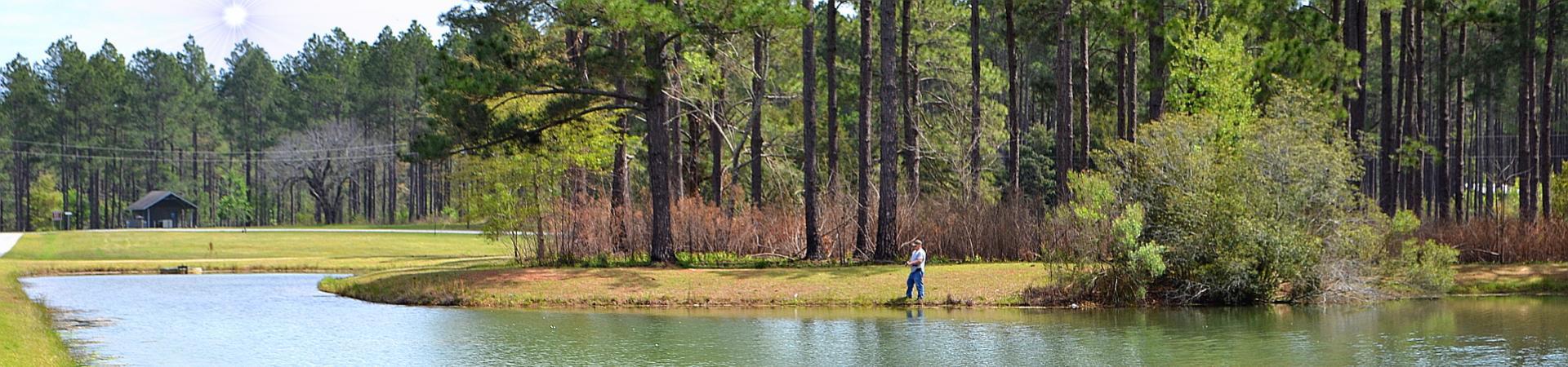 Fishing on Pond