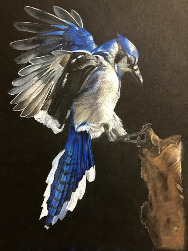 Bird Painting in Oil on Canvas